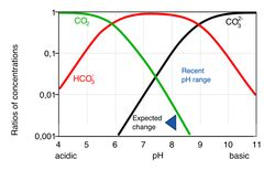 Adaptation and the physiology of ocean acidification