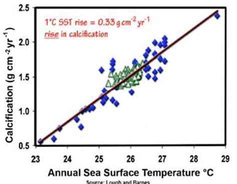 Literature Review: Effects of Ocean Acidification on Coral